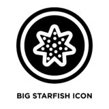 Big Starfish icon vector isolated on white background, logo conc vector illustration