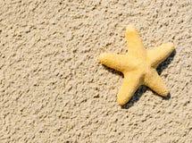 Big starfish on the sandy beach Stock Photo