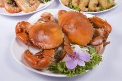 Big steam crab Royalty Free Stock Image