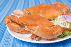 Big steam crab Royalty Free Stock Photo