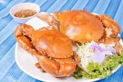 Big steam crab Royalty Free Stock Photography