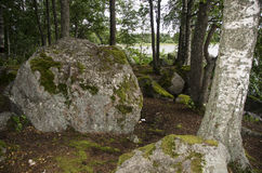Big stone in the forest Stock Photos