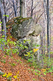 Big stone in a forest on a sunny autumn day at Homolje mountains Stock Photos
