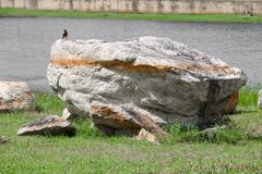 Big stone in the grass background.  Stock Image
