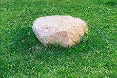 Big stone in the grass Royalty Free Stock Photos
