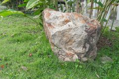 Big stone in the grass. On left of meadow in green grass . select focus stone Royalty Free Stock Photography