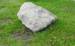 Big stone in the grass. On left of meadow in green grass . select focus stone Stock Photo