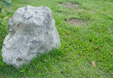 Big stone in the grass. On left of meadow in green grass . select focus stone Royalty Free Stock Photos