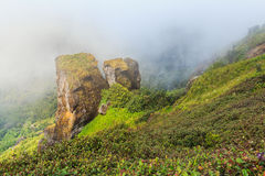 Big stone and mountain and fog at Doi inthanon in Chiangmai province,Thailand. Beautiful mountain and fog at Doi inthanon in Chiangmai province,Thailand Stock Images