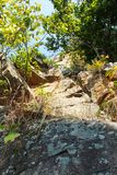 Big stone in mountain forest royalty free stock image