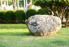 Big stone and rock in garden and park Royalty Free Stock Image