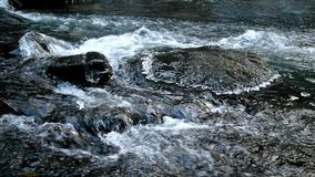 Big stone with small icicles in cold milky blurred water of mountain stream. Stock Photos