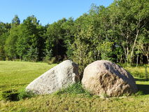 Big stones on grass. Big beautiful natural stones and summer plants, Lithuania Stock Photos
