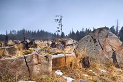 Big stones in Harz mountains Stock Photo