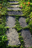 Big stones paved path in greens Royalty Free Stock Photo