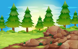 Big stones and pine trees stock illustration