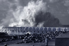 Big stormy sea wave Stock Photos