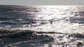 Big stormy sea wave light reflexion stock video footage