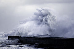 Big stormy wave splash Royalty Free Stock Images