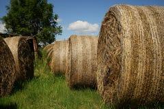 Big straw bales Stock Photo