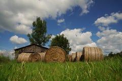 Big straw bales Stock Image