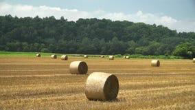 Big Straw roll lying in the farm stock video