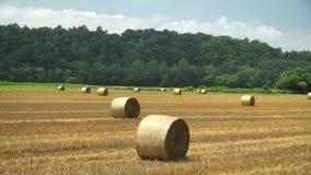 Big Straw roll lying in the farm stock video footage