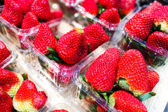 Big strawberries in containers Royalty Free Stock Image