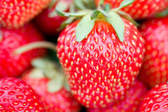 Big strawberry with shalow depth of view Stock Images