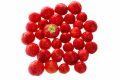 Big Strawberry Standing Out From The Crowd Royalty Free Stock Photography