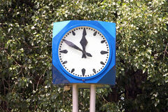 Big street clock. In front of green leaves Stock Photography