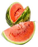 The big striped ripe water-melon Royalty Free Stock Image