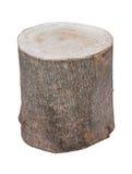 Big stump. Stock Photos