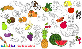 Big summer fruit set cartoon. Page to be colored. Big summer fruit set to be colored. Coloring book for children. Visual educational game. Easy kid gaming Stock Photography