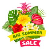 Big summer sale Royalty Free Stock Images