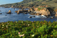 Big Sur. California Coastline by Big Sur Royalty Free Stock Photography