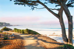 Big Sur, CA, USA Stockfotos