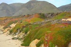 Big Sur, California Imagen de archivo