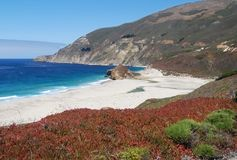 Big Sur , California Royalty Free Stock Photography