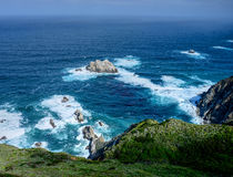 Big Sur California Royalty Free Stock Photo