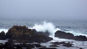 BIG SUR, CALIFORNIA, STATI UNITI - 7 OTTOBRE 2014: Onde di oceano enormi che schiacciano sulle rocce al parco di stato di Pfeiffe Fotografia Stock Libera da Diritti