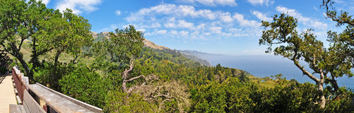 Big Sur, viewpoint, green, landscape, nature, California, United States of America, Usa. California: the view from Nephente restaurant on June 8, 2010. The Royalty Free Stock Photo