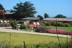 Big Sur Central Coast California gorgeous coastline - Ragged Point. Flower garden at Ragged Point Resort scenic coastal highway 1. Zen relaxation meditation Royalty Free Stock Image