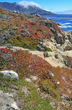 Big Sur Coast California Stock Image