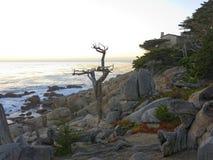 Big Sur en California Foto de archivo libre de regalías