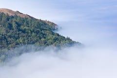 Big Sur Fog Stock Image