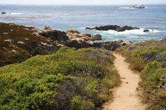 Big Sur Hiking. A hiking trail along the Big Sur coast in California Stock Image