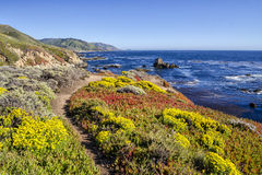 Big Sur Path Royalty Free Stock Photos