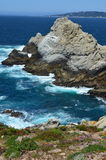 Big- Surpazifischer ozean Stockfotografie
