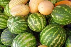 Big sweet green watermelons Stock Image